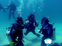 Phuket scuba diving course Padi open water cours thailand liveaboard Similan